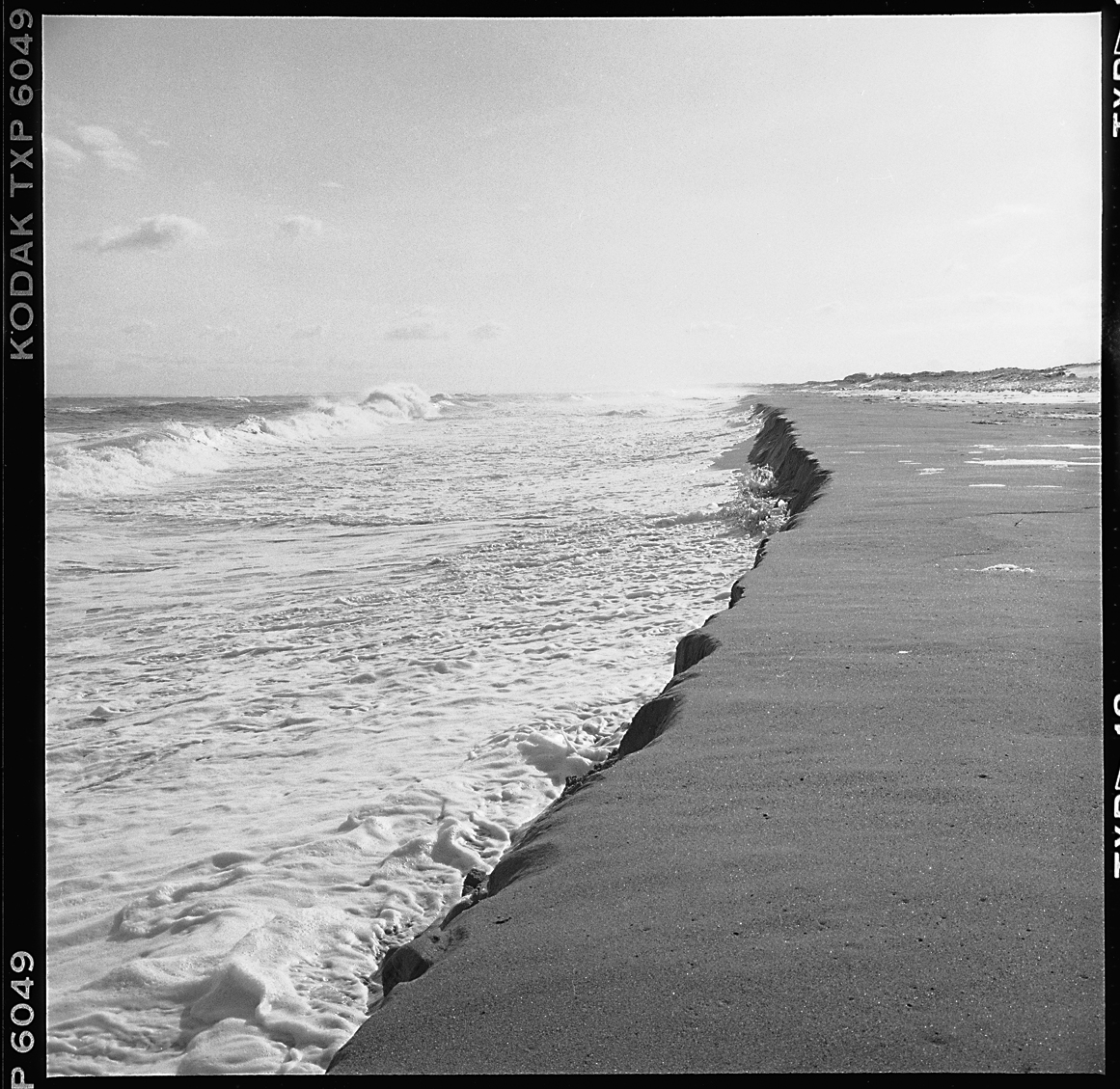 Plum Island Beach: Black & White Winter Beachscapes